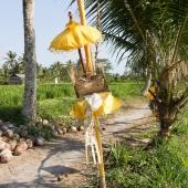 Bali2015-13-066