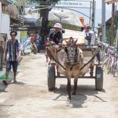 Bali2015-16-014