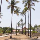 Bali2015-16-016