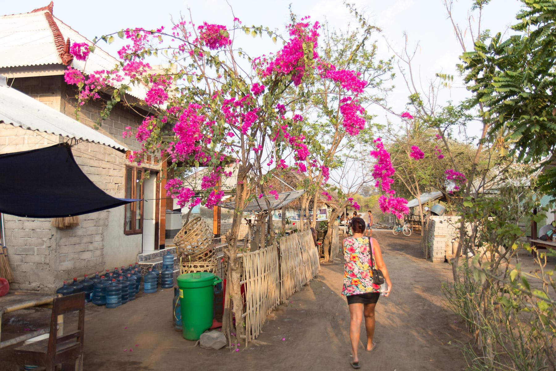 Bali2015-17-032