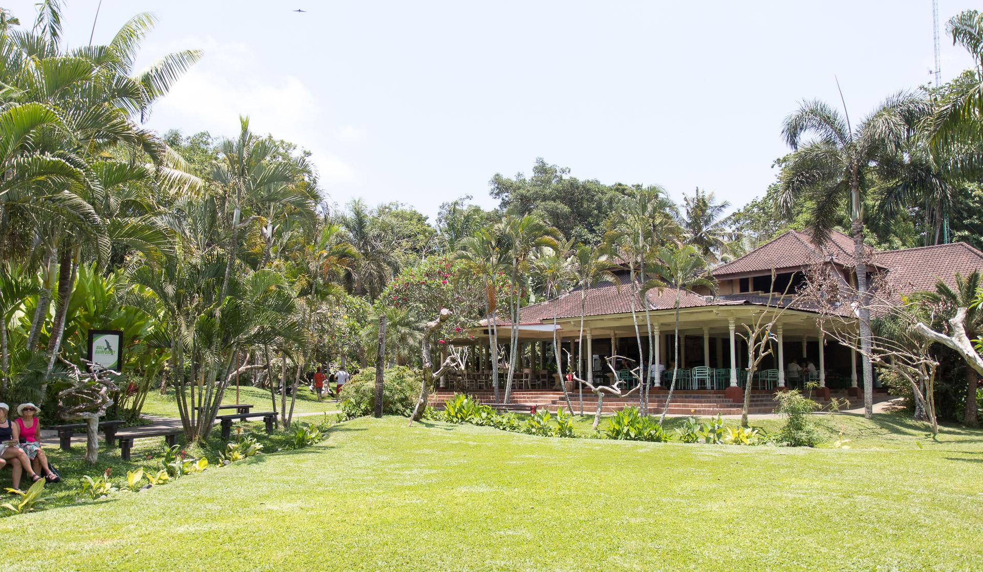 Bali2015-20-005