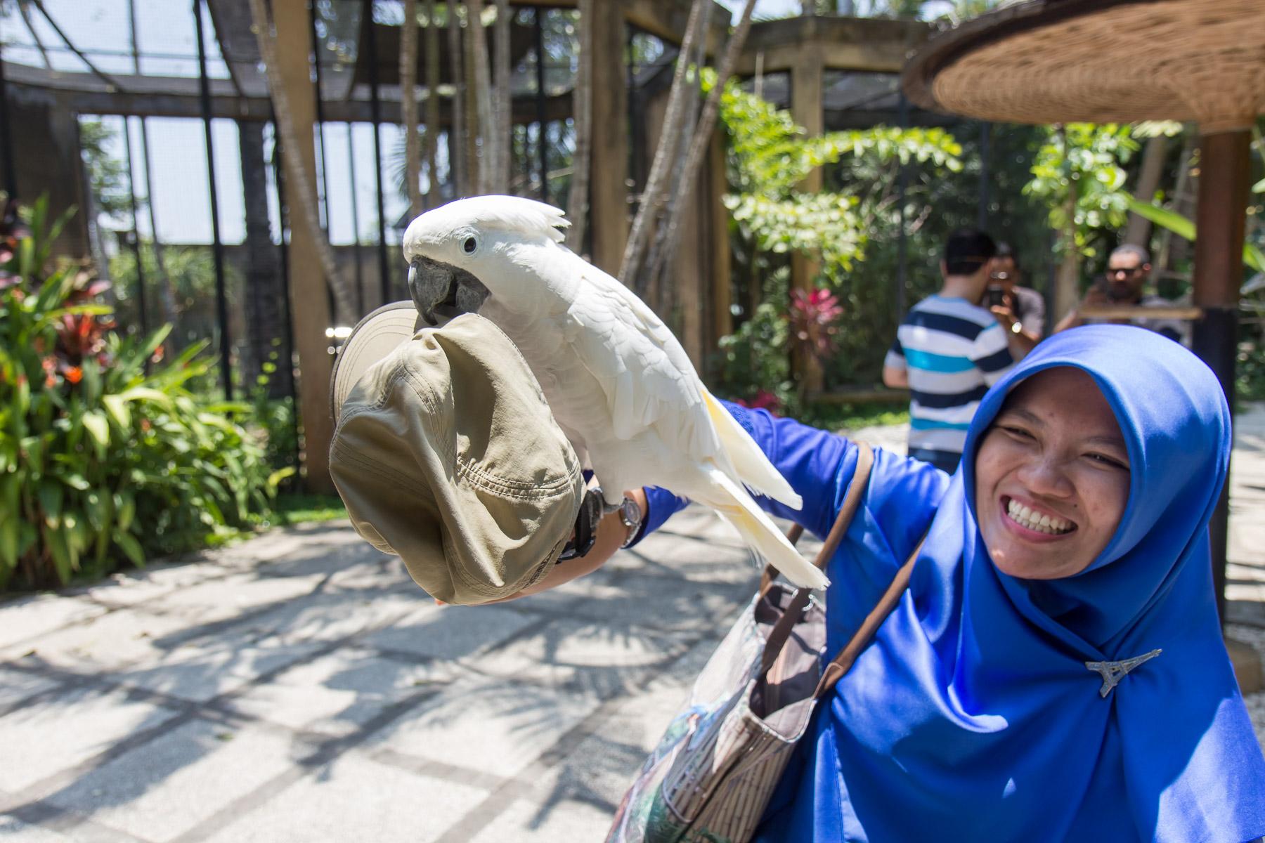 Bali2015-20-011