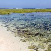 Bali2015-05-021
