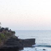 Bali2015-06-036
