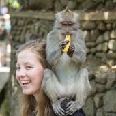 Bali2015-07-050