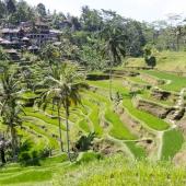 Bali2015-09-013